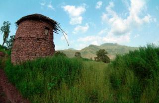 Zelená Etiopie.   Rozloha Etiopie činí 1 223 500 km2. Nejvyšší horou je Ras Dašan 4620 m, nejnižší bod je naproti tomu -116 m. Nejdelší řeka je Abaj (Modrý Nil) 2900 km. VEtiopii žije přes 55 milionů obyvatel, úředním jazykem je amharština. Průměrný věk mužů je pouhých 45 let.   (Etiopie)